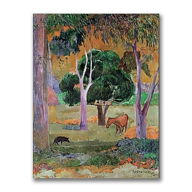 Trademark Fine Art Paul Gauguin 'Dominican Landscape' Canvas Art 35x47 Inches