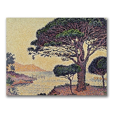 Trademark Fine Art Paul Signac 'Umbrella Pines at Caroubier' Canvas Art 24x32 Inches