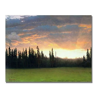 Trademark Fine Art Albert Biersdant 'California Sunset II' Canvas Art