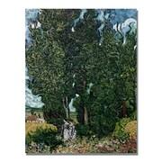 Trademark Fine Art Vincent Van Gogh 'The Cypresses' Canvas Art 35x47 Inches