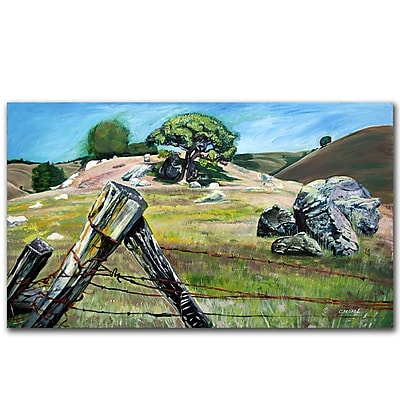 Trademark Fine Art Coleen Proppe 'Nicasio Fence Post' Canvas Art 10x19 Inches