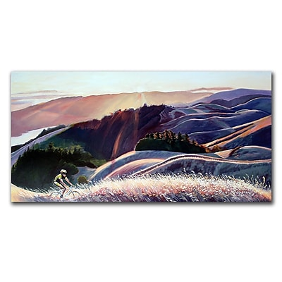 Trademark Fine Art Sunset Cyclist by Colleen Proppe 24x47 Canvas Ready to Hang 24x47 Inches