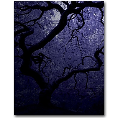 Trademark Fine Art David Farley 'Japanese Tree III' Canvas Art 18x24 Inches