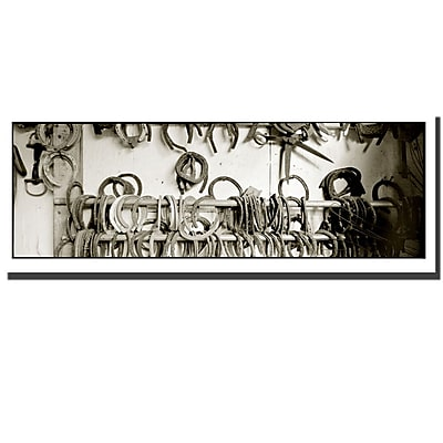 Trademark Fine Art Shoes by Preston-Ready to Hang Art 16x48 Inches