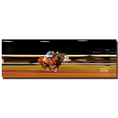 Trademark Fine Art Preston, 'By a Nose' Canvas Art 16x47 Inches