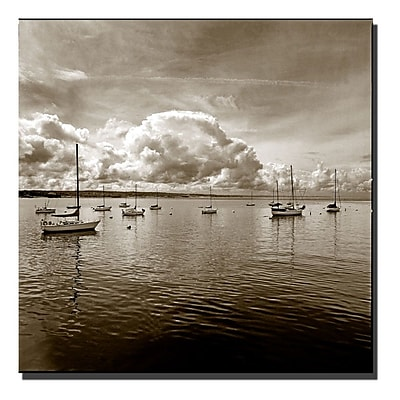 Trademark Fine Art Monteray Bay by Preston-Ready to Hang Art