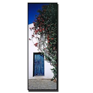 Trademark Fine Art Spanish Door by Preston-Ready to Hang Art