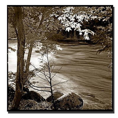 Trademark Fine Art Yosemite II by Preston-Ready to Hang Art 35x35 Inches