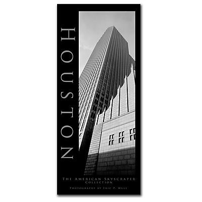 Trademark Fine Art Houston by Preston-Ready to Hang Art 10x24 Inches