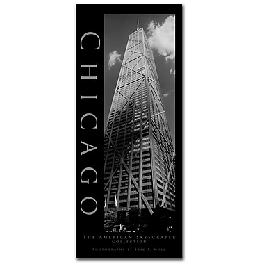 Trademark Fine Art Chicago by Preston-Ready to Hang Art 14x32 Inches