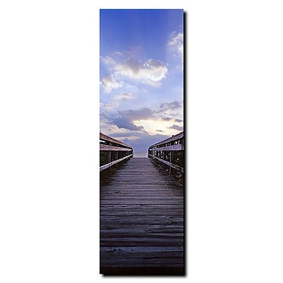 Trademark Fine Art Destination' by Preston-Ready to Hang Art 8x24 Inches