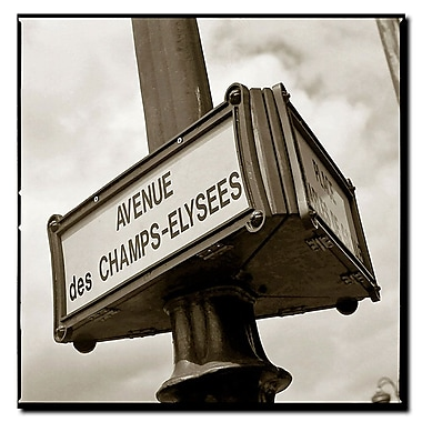 Trademark Fine Art 'Avenue des Champs Elysee by Preston-18x18 Ready to Hang Art 18x18 Inches