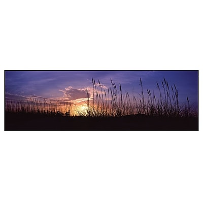 Trademark Fine Art Sunset by Preston-Ready to Hang Art 10x32 Inches