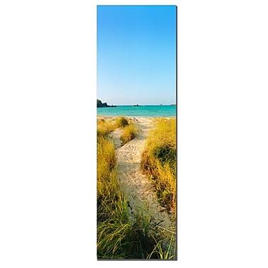 Trademark Fine Art Bermuda Beach by Preston-Ready to Hang Art 10x32 Inches