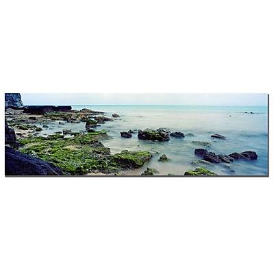 Trademark Fine Art Bermuda Coast by Preston-Ready to Hang Art 10x32 Inches