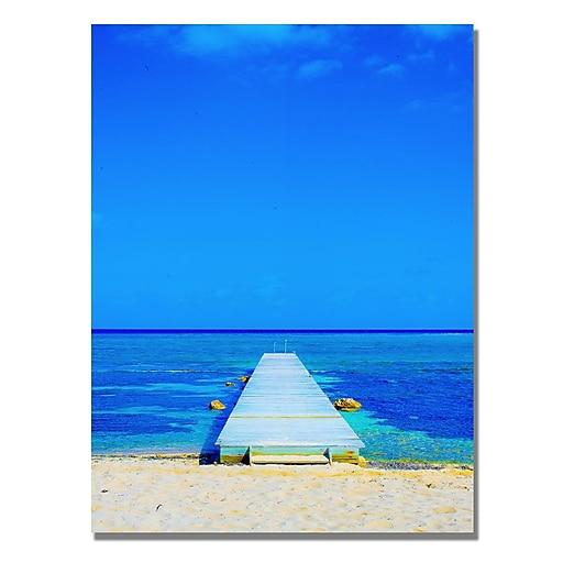 Trademark Fine Art Preston 'Beach-Pier' Canvas Art 35x47 Inches
