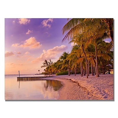 Trademark Fine Art Preston 'Cayman Beach Full' Canvas Art 35x47 Inches
