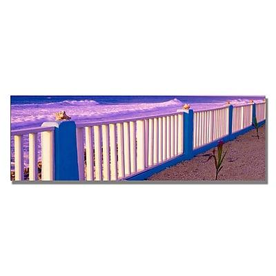 Trademark Fine Art Preston 'Floods Cove' Canvas Art 16x47 Inches