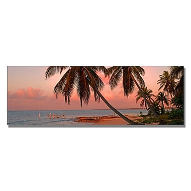 Trademark Fine Art Preston 'Cayman Palms II' Canvas Art 12x32 Inches