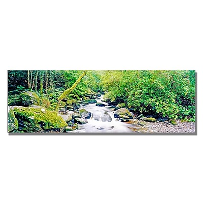 Trademark Fine Art Preston 'Ireland Green' Canvas Art 16x47 Inches