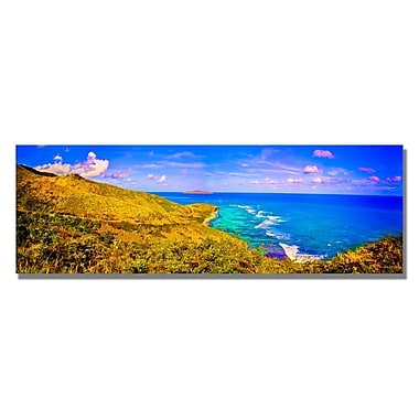 Trademark Fine Art Preston 'St. Croix Pano' Canvas Art 16x47 Inches