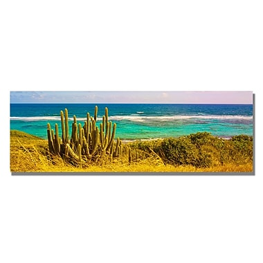 Trademark Fine Art Preston 'St. Croix Beach' Canvas Art 16x47 Inches