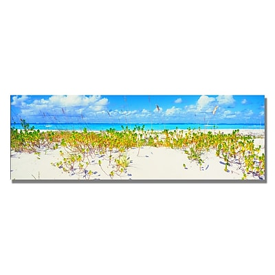 Trademark Fine Art Preston 'Turks Beach' Canvas Art 16x47 Inches