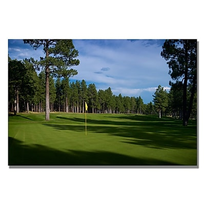 Trademark Fine Art Afternoon on the Green Canvas Golf Art 16x24 Inches