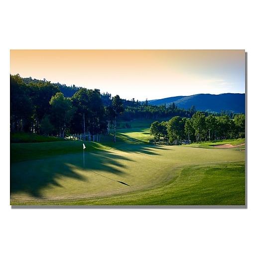 Trademark Fine Art A Shady Green Canvas Golf Art 22x32 Inches