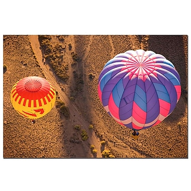 Trademark Fine Art Balloon Duet by AIANA Canvas Art Ready to Hang