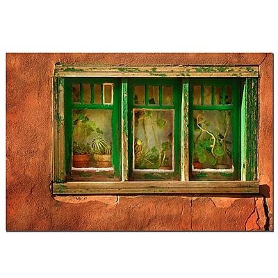 Trademark Fine Art Cactus Window by AIANA Canvas Art Ready to Hang 16x24 Inches