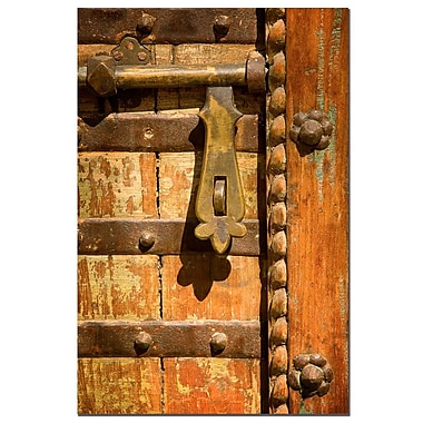 Trademark Fine Art The Latch by AIANA Canvas Art Ready to Hang