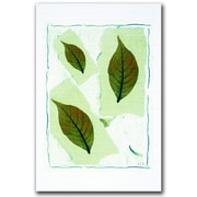 Trademark Fine Art Three from the Tree by Kathie McCurdy Canvas Art