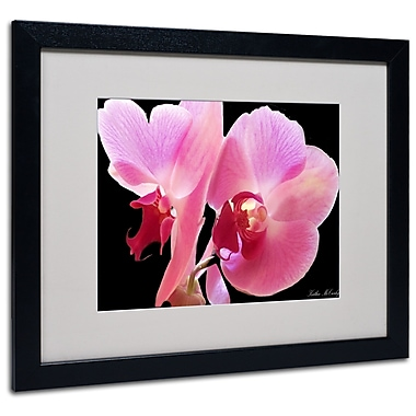 Kathie McCurdy 'Orchid' Matted Framed Art - 11x14 Inches - Wood Frame