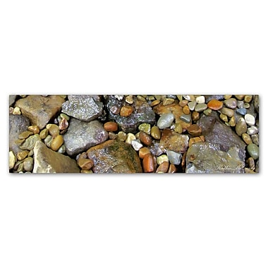 Trademark Fine Art Kathie McCurdy 'Rocks' Canvas Art