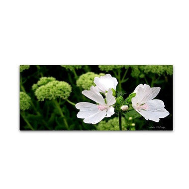 Trademark Fine Art Kathie McCurdy 'White Mallow' Canvas Art