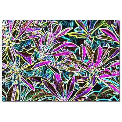Trademark Fine Art Kathie McCurdy 'Rainbow Woods' Canvas Art