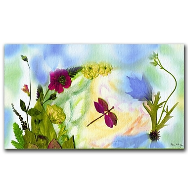 Trademark Fine Art Dragonfly Dream by Kathie McCurdy Canvas Art