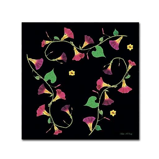 Trademark Fine Art Kathie McCurdy 'Pressed Flowers Morning Glories' Canvas Art