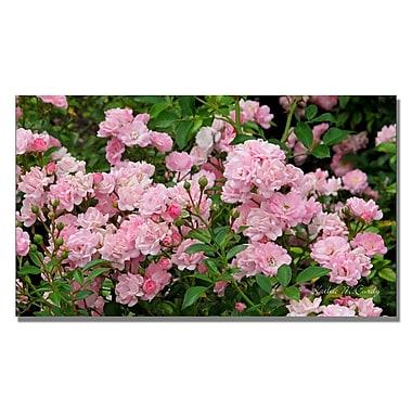 Trademark Fine Art Kathie McCurdy 'Pink Roses' Canvas Art