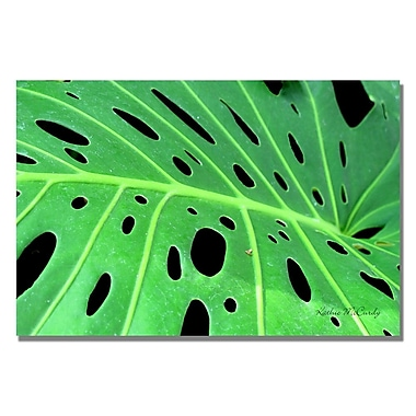 Trademark Fine Art Kathie McCurdy 'Tropical Leaf' Canvas Art 16x24 Inches