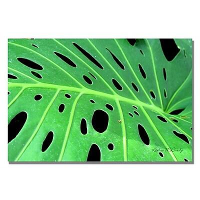 Trademark Fine Art Kathie McCurdy 'Tropical Leaf' Canvas Art 16x24 Inches