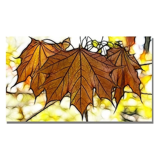 Trademark Fine Art Kathie McCurdy 'Maple Leaves' Canvas Art 14x24 Inches