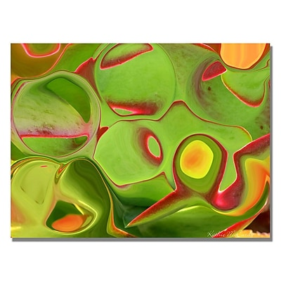 Trademark Fine Art Kathie McCurdy 'Red Rose' Canvas Art 248572