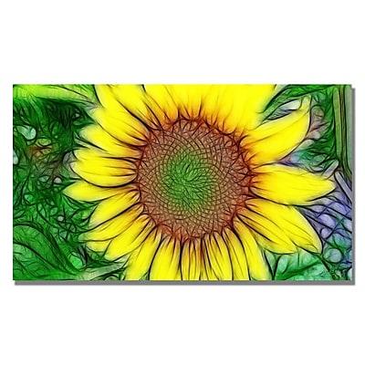 Trademark Fine Art Kathie McCurdy 'Sunflower' Canvas Art 14x24 Inches
