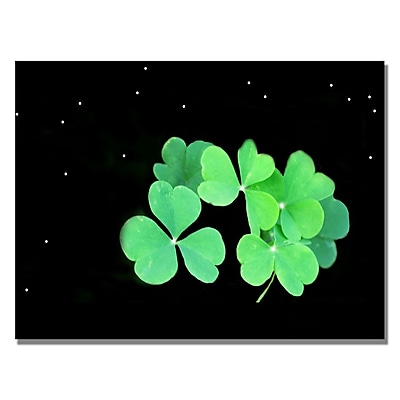 Trademark Fine Art Kathie McCurdy 'Clover' Canvas Art