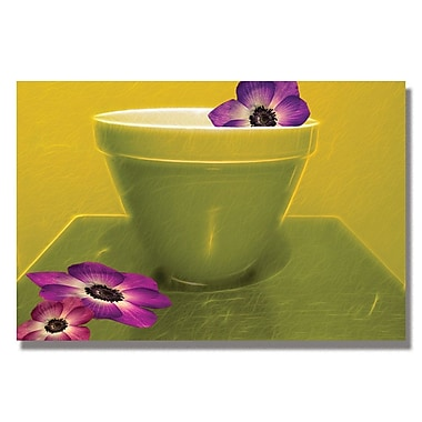 Trademark Fine Art Kathie McCurdy 'Recipe for Beauty' Canvas Art