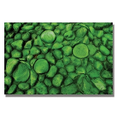 Trademark Fine Art Kathie McCurdy 'Green River Rocks' Canvas Art 16x24 Inches