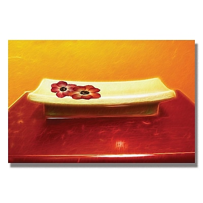 Trademark Fine Art Kathie McCurdy 'Zen Flowers' Canvas Art 16x24 Inches