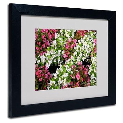 Trademark Fine Art Kathie McCurdy 'Begonia Garden' Matted Art Black Frame 11x14 Inches